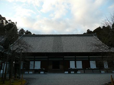 5zuihoji