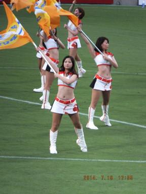 Kawasakisen_8